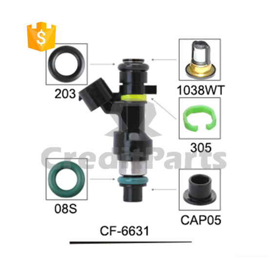 China CF-6631 Car Accessory Fuel Injector Service Components