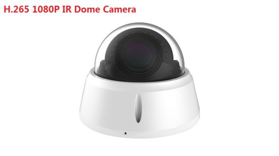 Fsan 1080P IR Infrared Waterproof HD Network Metal Dome IP Camera