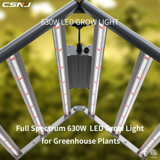 Equivalent Spydr Full Spectrum 630W Best LED Indoor Plant Grow Lights for Greenhouse Plants