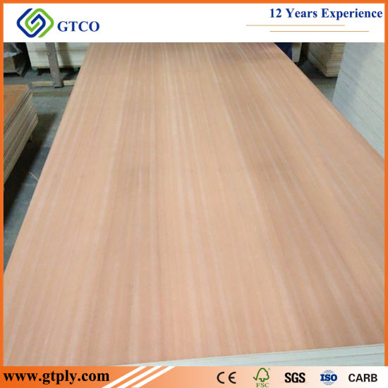 770X2020X3mm Sapeli Plywood Door