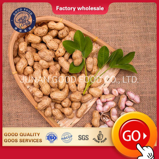 Groundnut Peanuts Long Raw Peanut for Sale pictures & photos