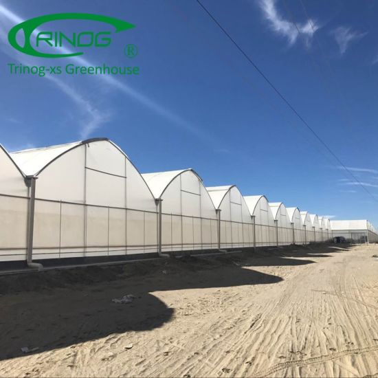 PO film greenhouse plastic product for agriculture farm