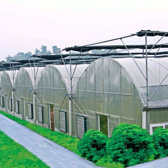 Ebb Glass Plastic Film Commercial Polycarbonate Sheet Nursery Greenhouse with Shading Net System