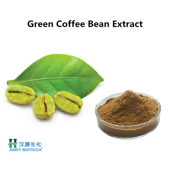 Herbal Extract Green Coffee Bean Extract Powder With 45 Total