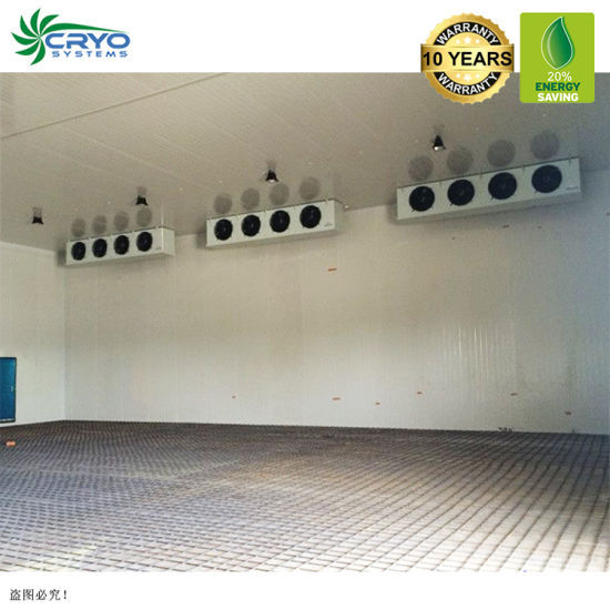 Kale Seed Cranberry Extract Blast Cold Room Cold Storage Shipping Containers Portable Rooms for Sale