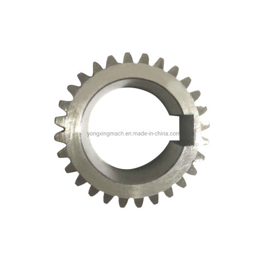 Professional Forging Pinion Small Spur Gear Power Transmission Parts