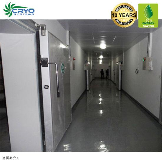 Commercial Storage Walk in Cooler Cuarto Frio Fur Storage Room