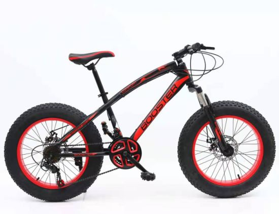 21 Speed Fat Tire Mountan Bicycle with Shimano Gear