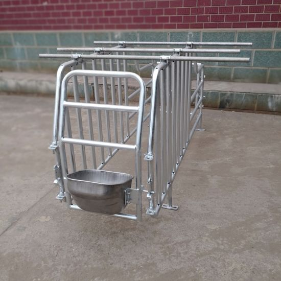 Ce Certificated Galvanized Animal Cage Pig Pen Pigsty for Pig Equipment pictures & photos