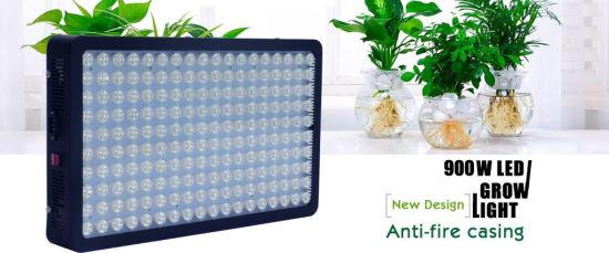 China 300-900W Advanced Diamond Gip LED Grow Lights for