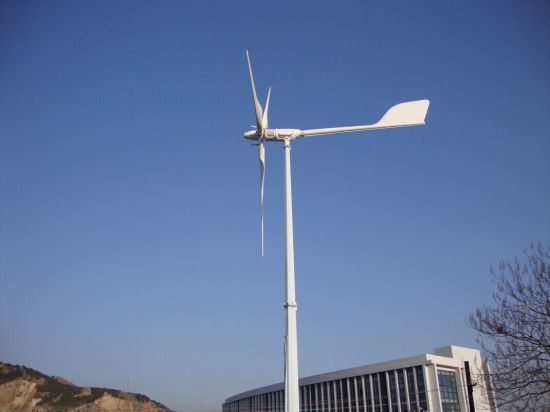 Wind Power 5kw for Home Use with CE Certificate