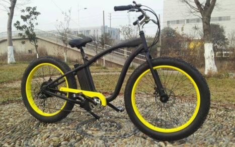 933852a221b 2017 750W/500W Giant High Speed E-Bike, 26′′*4.0 Inch Fat Tyre F/R Disc  Brake Mountain Electric Bike for Sale