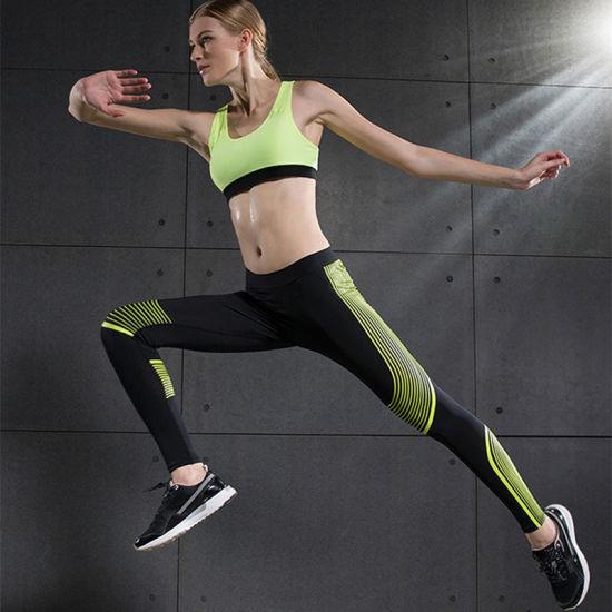 High Quality Women Leggings Fitness Bra Gym Wear