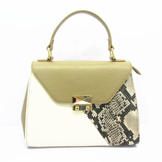 2019 New Fashion Women Handbags Crochet Designer Snake Skin Lady Bag with Top Quality Yt254 From Guangzhou Distributor