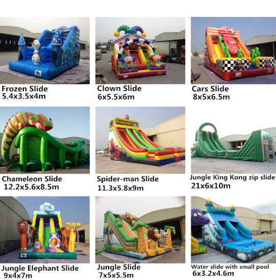 0.55mm PVC Tarpaulin Outdoor Vivid Chameleon Inflatable Slide pictures & photos