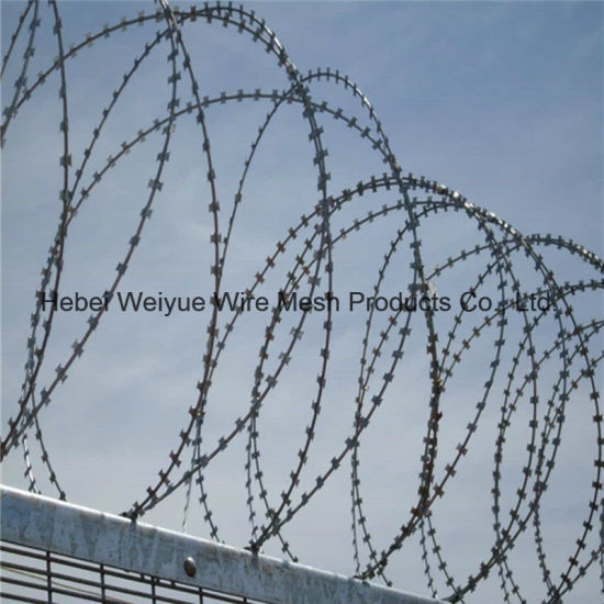 China Barbed Wire Blade Blade Gill Netting Used for Military/Prison ...