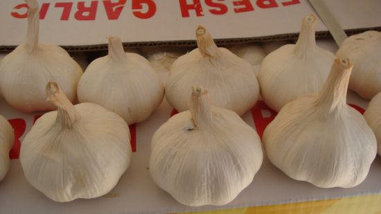 Chinese Good Quality Normal White Garlic pictures & photos