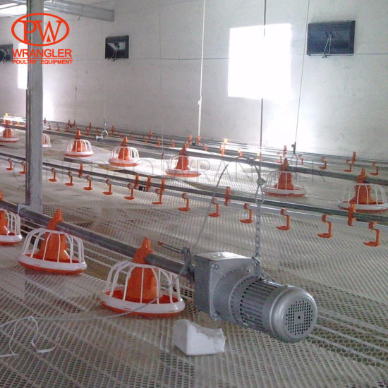 Famous Poultry Feeds Hopper for Filling System