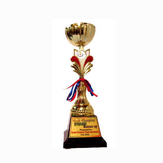Promotional Metal Decoration Gift Custom Cheap Iron World Cup Prize Trophy Award (019) pictures & photos