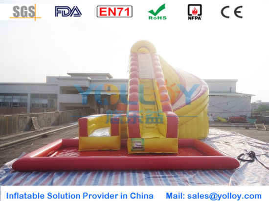 Outdoor Playground Inflatable Water Slide Toys with Pool pictures & photos