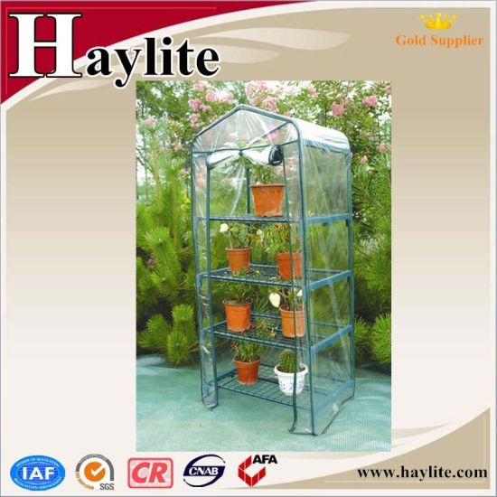 Plastic Film Greenhouse for Vegetable Growing pictures & photos