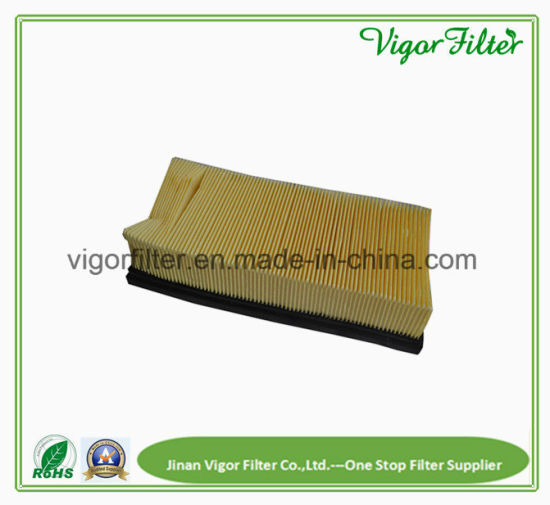 Air Filter for Models Tennant 3610 & Nobles Scout Vacuums pictures & photos