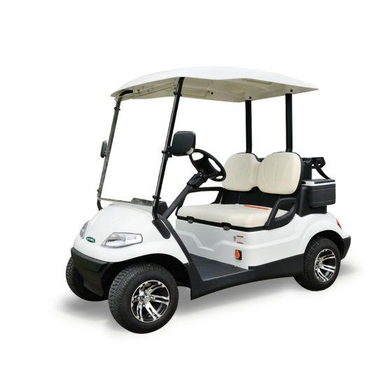 China 2 Seaters Electric Mini Club Cart China Golf Car Sale