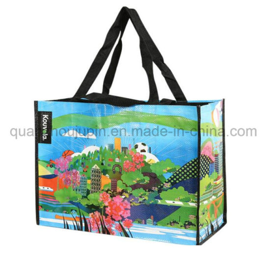 Custom Waterproof Plastic Woven Hand Shopping Bag Handbag pictures & photos