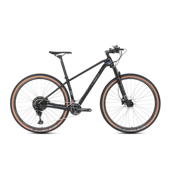 OEM Shimano Carbon Mountain Bike Bicicleta with Hydraulic Brake
