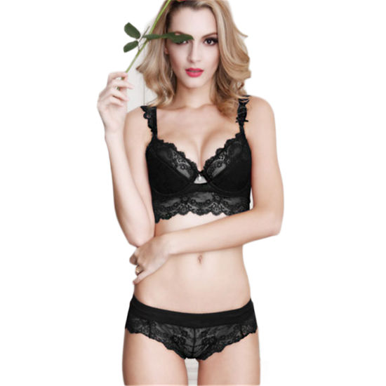 28b1cc2ec9618 China Embroidery Lace Demi Cup Bra and Brief Set (FPY328) - China ...