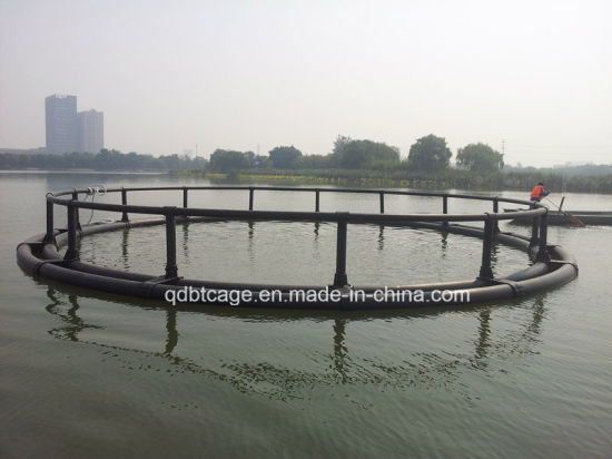 HDPE Farming Fish Fingerling Net Cage /Sea Cages (20121002_114000) pictures & photos