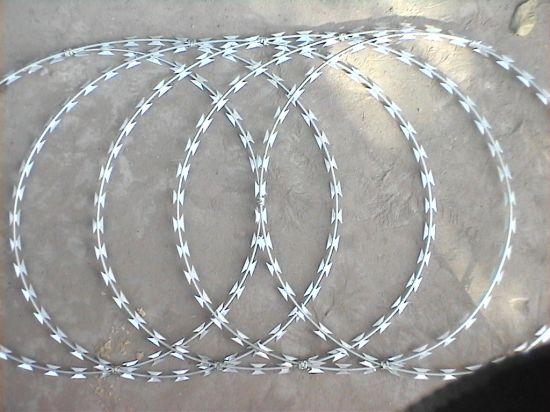 Galvanized Stainless Steel Flat Type Razor Barbed Wire