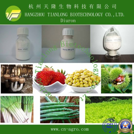 Highly Effective Herbicide Diuron (98%TC, 80%WDG, 80%WP, 50%SC, 80%SC)