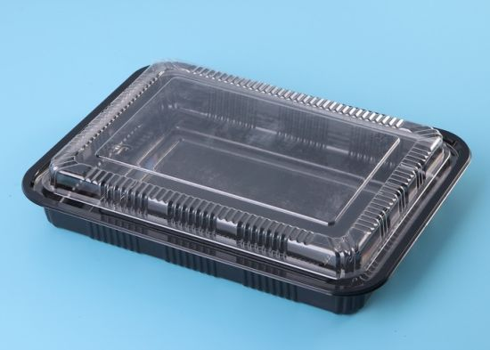 Disposable Plastic Container Sushi Service Packing Tray with Lid Sushi Plate & China Disposable Plastic Container Sushi Service Packing Tray with ...
