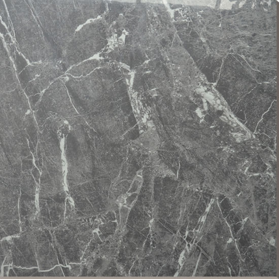 China Hs649gn Gray Color Cheap Ceramic Floor Tile 60x60 Price
