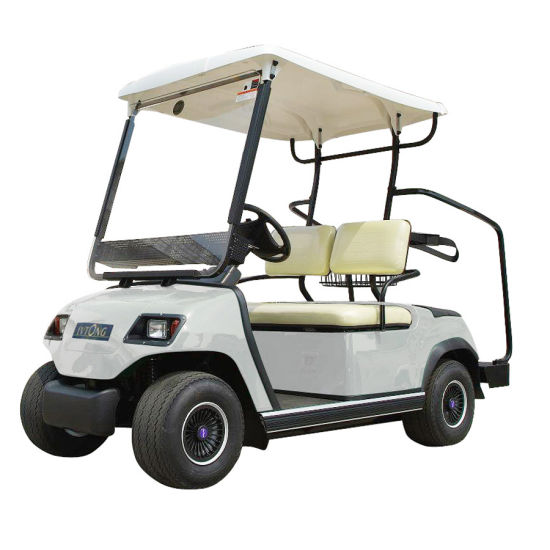Wholesale 2 Passengers Electric Buggy pictures & photos