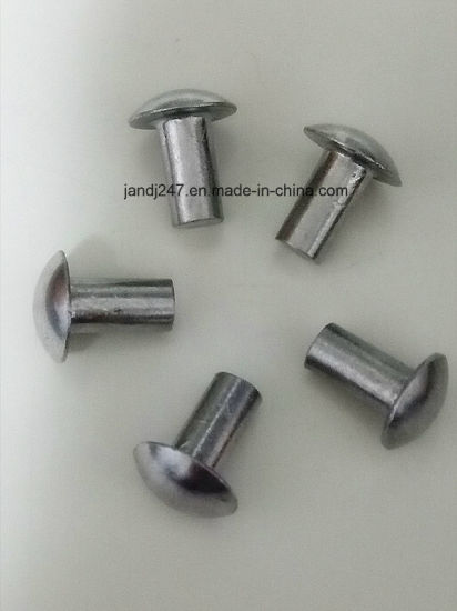 White Color Zinc Plated Aluminum Nail in Guangzhou pictures & photos