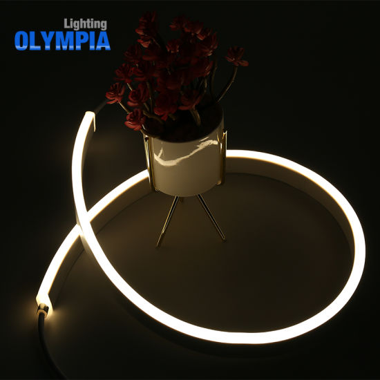 Neutral Packing SMD5050 IP68 Waterproof Flexible LED Neon Strip