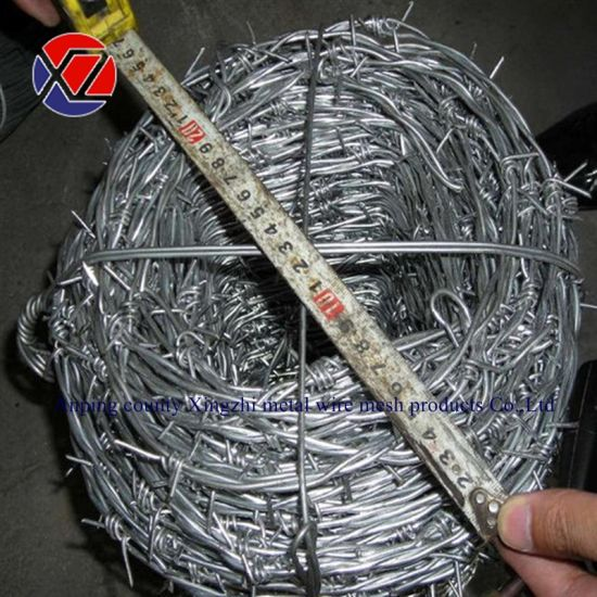 Hot-DIP Galvanized Barbed Wire Per Roll (Factory price)