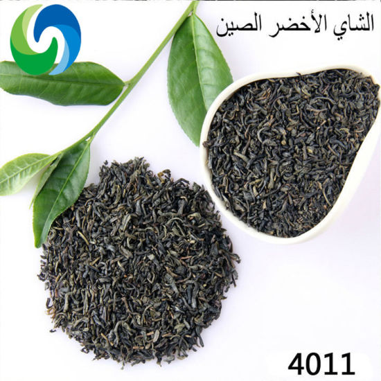 Wholesale Tea 4011 High Moutain Chinese Organic Green Tea Leaves