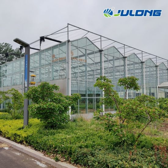 Cheap China Manufacturer Venlo Type Multi Span Intelligent Glass Greenhouse