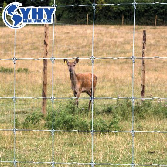 Height Heavy Wire Horse Netting Bull Wire Fence