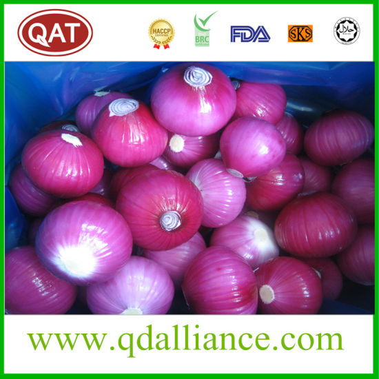 Top Quality Fresh Peeled Onion with Good Price pictures & photos