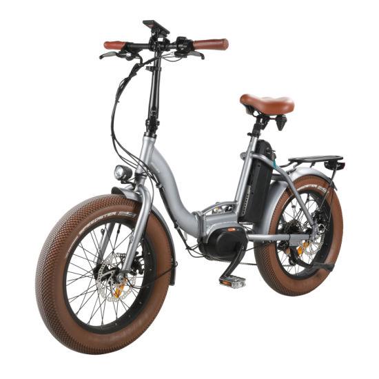 250-350W MID Drive Folding Electric Bike