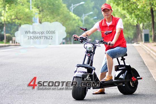 1000W 1500W Big Wheel Citycoco Electric Scooter Es8004