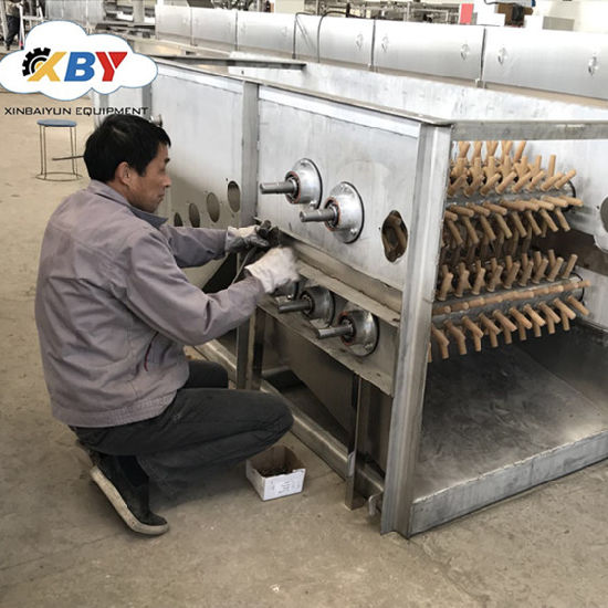 Poultry Chicken Scalding Tank and Plucking Combined Machine Together Using