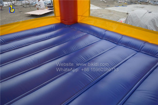 Jumping Castles, Inflatable Bouncer, Small Jumper B1041 pictures & photos
