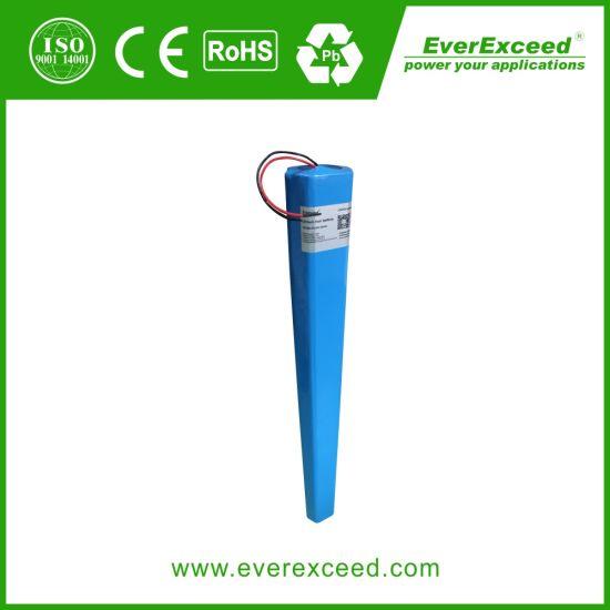 12V/24V Solar Street Light Lithium Iron Phosphate (LiFePO4) Battery