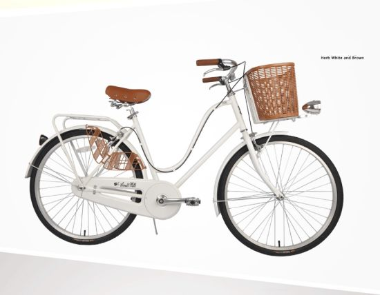 New Model Traditional Bicycle Retro Lady Bike (TR309)