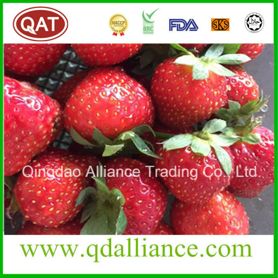 New Crop IQF Frozen Strawberry/Frozen Fruits pictures & photos